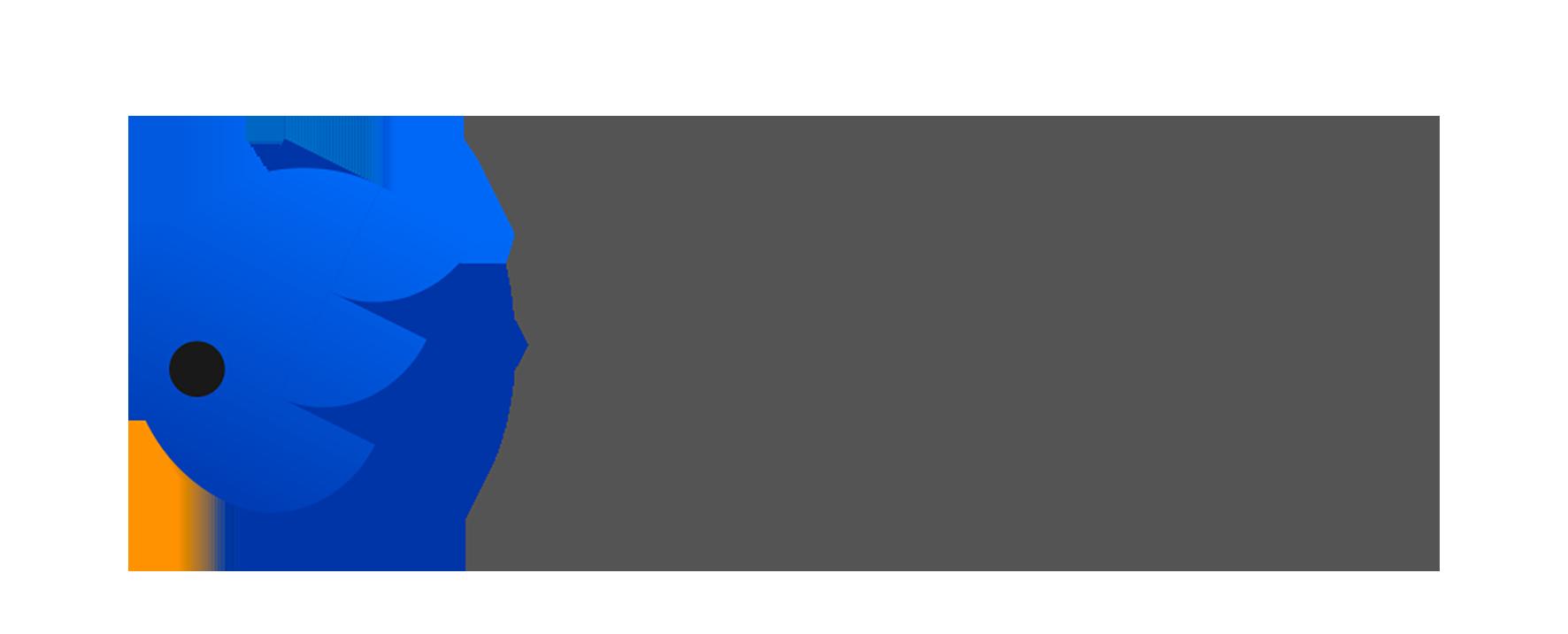Enliven Designers